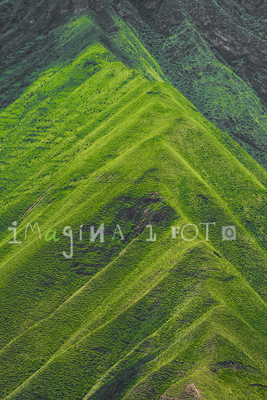 nature photography Andes mountains green